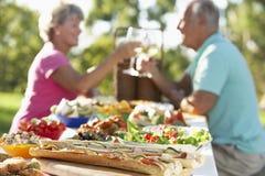 用餐每幅壁画的Al夫妇其他敬酒 免版税库存图片