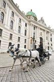 用马拉的支架在维也纳 图库摄影