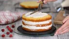 用黄油奶油松糕盖的酥皮点心特写镜头 在酥皮点心袋子的奶油 影视素材