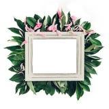 用绿色叶子装饰的淡色木制框架,文本的空间 嘲笑 免版税库存图片