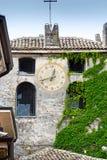 用绿色常春藤盖的钟楼 库存照片