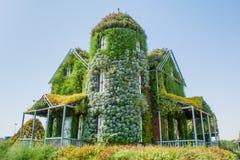 用绿色植物和五颜六色的花盖的巨大的美丽的惊人的豪宅 库存照片