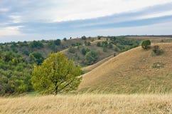 用黄色草盖的小山在多雨云彩下 库存图片