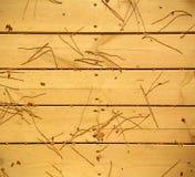 用pineneedles盖的木地板 免版税图库摄影