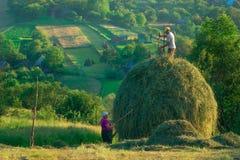 田园曲场面在罗马尼亚乡下 库存图片