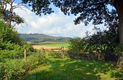 田园英国-在吉尔福德附近的Cranleigh农场在萨里,英国 免版税图库摄影