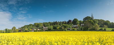 田园诗农村风景, Cotswolds英国 免版税库存照片