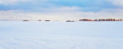 田园诗冬天风景全景:与随风飘飞的雪的冷淡的风景 图库摄影