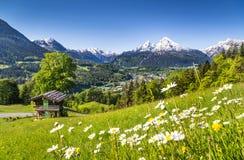 田园诗夏天风景在有山村庄的阿尔卑斯 库存照片