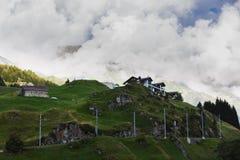 田园诗夏天风景在有新绿色的阿尔卑斯 库存图片