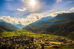 田园诗夏天风景在有新绿色的阿尔卑斯 免版税图库摄影