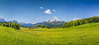 田园诗夏天风景在阿尔卑斯 免版税库存图片