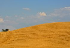 田园诗小山在托斯卡纳,意大利 库存照片