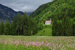 田园诗山风景在有草甸和教会的巴法力亚阿尔卑斯 免版税库存图片