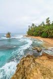 田园诗海滩曼萨尼约角哥斯达黎加 免版税库存照片