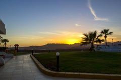 田园诗热带日落、棕榈树和小径有光的,在一种手段在度假 免版税库存图片