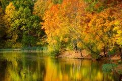 田园诗秋天风景在维尔纽斯 免版税库存图片