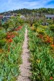 田园诗道路在吉韦尔尼,诺曼底,法国 免版税库存照片