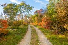 田园诗道路在秋天 免版税库存图片