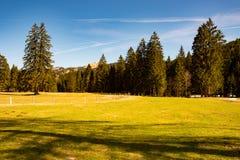 田园诗风景在德国阿尔卑斯 库存照片