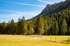 田园诗风景在德国阿尔卑斯 免版税库存照片