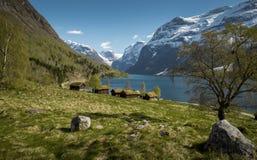田园诗风景在挪威 免版税图库摄影