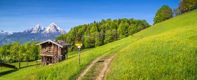 田园诗风景在有山小屋的阿尔卑斯春天 免版税库存照片