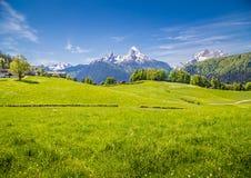 田园诗风景在有绿色草甸和农舍的阿尔卑斯 免版税库存照片