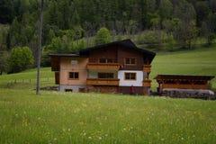 田园诗风景在阿尔卑斯与传统山瑞士山中的牧人小屋和新鲜的绿色山的春天吃草与花 图库摄影