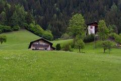 田园诗风景在阿尔卑斯与传统山瑞士山中的牧人小屋和新鲜的绿色山的春天吃草与花 免版税图库摄影