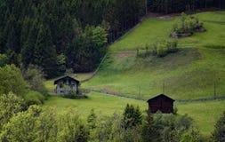 田园诗风景在阿尔卑斯与传统山瑞士山中的牧人小屋和新鲜的绿色山的春天吃草与花 库存图片