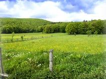 田园诗风景在阿尔卑斯 库存照片