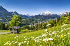 田园诗风景在巴法力亚阿尔卑斯,贝希特斯加登,德国 免版税图库摄影