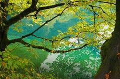 田园诗风景天蓝色湖 免版税库存照片