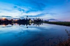 稻田在大山脚槟榔岛,马来西亚 库存图片