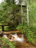 由一条小河的老教堂在森林里 免版税库存图片