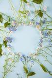 由一点蓝色和白花做的春天圆的框架在轻的薄荷的背景 免版税库存图片