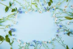 由一点蓝色和白花做的春天框架在光mi 免版税库存图片