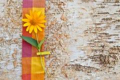 由与一朵黄色花的birchwood做的背景 库存图片