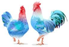 由中国日历的蓝色雄鸡和鸡女性标志2017年 免版税库存图片