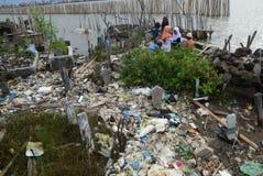 由于海岸侵蚀被淹没的坟茔 免版税图库摄影