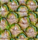 由五颜六色的菠萝做的无缝的样式 库存图片