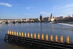 由伏尔塔瓦河河的黄色企鹅雕象在布拉格,捷克Repu 库存照片