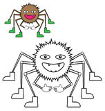 由例子蜘蛛的颜色 图库摄影