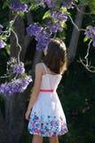 由兰花楹属植物树的女孩 免版税库存图片