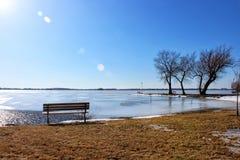 由冻湖的湖边长凳 免版税库存照片