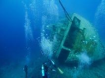 由击毁雪松自豪感的佩戴水肺的潜水在亚喀巴,约旦,红海 免版税库存照片