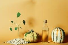 由南瓜籽和油做的南瓜 免版税库存图片