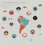 由发源国的狗 拉丁美洲的狗品种 Infographi 向量例证