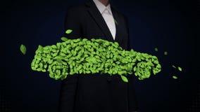 由叶子做的女实业家感人的eco绿色汽车 叶子 股票录像